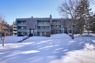 Photo 33: 4103, 315 Southampton Drive SW in Calgary: Southwood Apartment for sale : MLS®# A1072279