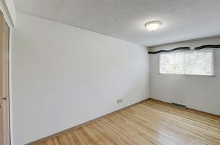Photo 20: 2740 LIONEL Crescent SW in Calgary: Lakeview Detached for sale : MLS®# C4303561