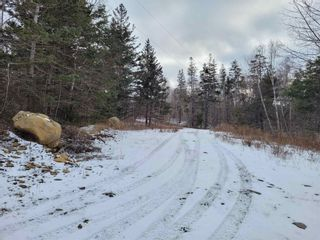 Photo 10: 2220 Shore Road in Delaps Cove: 400-Annapolis County Vacant Land for sale (Annapolis Valley)  : MLS®# 202101419