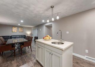 Photo 31: 1503 RADISSON Drive SE in Calgary: Albert Park/Radisson Heights Detached for sale : MLS®# A1089015