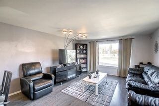 Photo 16: 40 649 Main Street N: Airdrie Mobile for sale : MLS®# A1153101