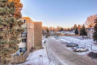 Photo 37: 201 7825 159 Street in Edmonton: Zone 22 Condo for sale : MLS®# E4225328
