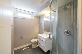 Photo 29: 12412 51 Avenue in Edmonton: Zone 15 House for sale : MLS®# E4243424