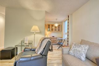 Photo 7: 201 1015 14 Avenue SW in Calgary: Beltline Apartment for sale : MLS®# A1074004