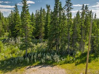 Photo 2: 7 34364 RANGE ROAD 42: Rural Mountain View County Land for sale : MLS®# A1017817