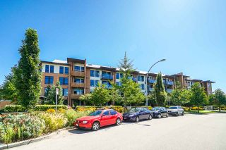 "Photo 1: 205 220 SALTER Street in New Westminster: Queensborough Condo for sale in ""GLASSHOUSE LOFTS"" : MLS®# R2412072"