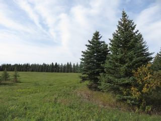 Photo 7: 0 Centreline Road: RM Springfield Vacant Land for sale (R04)  : MLS®# 202103923