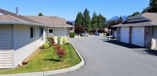 Photo 8: 10 22308 124th AVENUE in BRANDY WYND: Home for sale : MLS®# R2383704