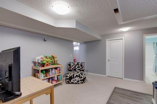 Photo 25: 227 Silver Springs Way NW: Airdrie Detached for sale : MLS®# A1083997