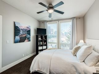 Photo 26: 301 41 6A Street NE in Calgary: Bridgeland/Riverside Apartment for sale : MLS®# A1081870