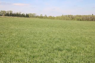 Photo 6: On  Range Road 2.5: Rural Mountain View County Land for sale : MLS®# A1112456