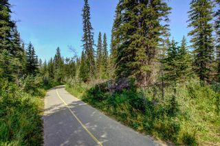 Photo 30: Abby Farm Lot #12 - 7550 Elkton Drive SW: Calgary Residential Land for sale : MLS®# A1114517