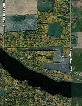 Photo 5: RR 274 TWP 481: Rural Leduc County Rural Land/Vacant Lot for sale : MLS®# E4224890