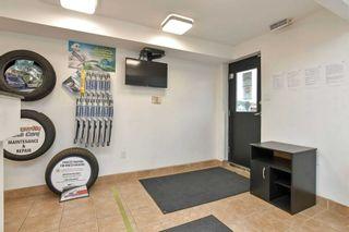 Photo 6: 9 Stewart Court: Orangeville Property for sale : MLS®# W5346677