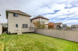 Photo 22: 1159 Country Hills Circle NW in Calgary: Country Hills Detached for sale : MLS®# A1150654