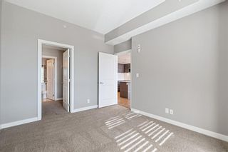 Photo 19: 303 1110 3 Avenue NW in Calgary: Hillhurst Apartment for sale : MLS®# A1124916