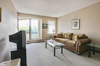 """Photo 4: 203 5224 204 Street in Langley: Langley City Condo for sale in """"SOUTH WYNDE COURT"""" : MLS®# R2600463"""