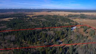 Photo 7: 20.02 Acres +/- NW of Cochrane in Rural Rocky View County: Rural Rocky View MD Land for sale : MLS®# A1065950