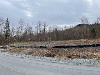 Photo 5: 25236 112 Avenue in Maple Ridge: Thornhill MR Land for sale : MLS®# R2546657