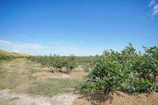Photo 19: 16397 40 Avenue in Surrey: Serpentine Land for sale (Cloverdale)  : MLS®# R2586709