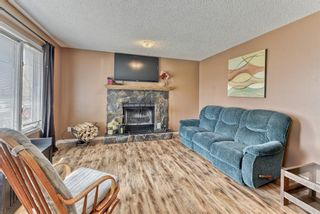 Photo 17: 424 Cole Crescent: Carseland Detached for sale : MLS®# A1106001