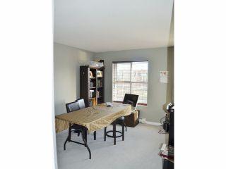 Photo 7: # 317 12633 72ND AV in Surrey: West Newton Condo for sale : MLS®# F1404475