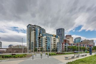 Photo 5: #909 325 3 ST SE in Calgary: Downtown East Village Condo for sale : MLS®# C4188161