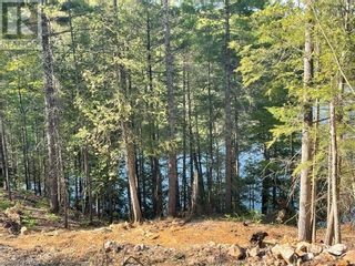 Photo 9: 1372 LAKE LORRAINE Road in Tory Hill: Vacant Land for sale : MLS®# 40052884