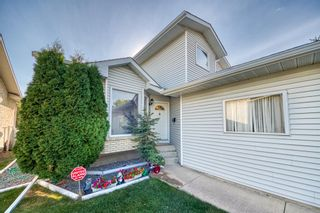 Photo 37: 190 Sandarac Drive NW in Calgary: Sandstone Valley Detached for sale : MLS®# A1146848