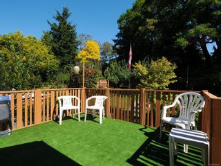 Photo 25: 3807 Merriman Dr in : SE Cedar Hill House for sale (Saanich East)  : MLS®# 854201