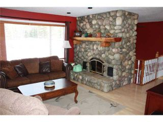 """Photo 5: 9765 PILOT MOUNTAIN Road in Prince George: Chief Lake Road House for sale in """"PILOT MOUNTAIN"""" (PG Rural North (Zone 76))  : MLS®# N207966"""