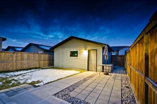 Photo 18: 169 SKYVIEW RANCH DR NE in Calgary: Skyview Ranch House for sale : MLS®# C4278111