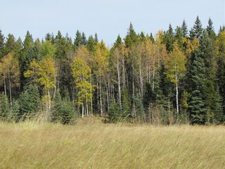 Photo 22: TWP Rd 310: Rural Mountain View County Land for sale : MLS®# C4292828