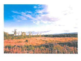 """Photo 14: LOT 14 BELL Place in Mackenzie: Mackenzie -Town Land for sale in """"BELL PLACE"""" (Mackenzie (Zone 69))  : MLS®# N227307"""