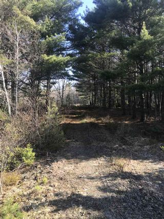 Photo 1: Lot 1A Huey Lake Road in Mount Pleasant: 405-Lunenburg County Vacant Land for sale (South Shore)  : MLS®# 202104629