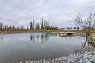Photo 23: 30160 BURGESS Avenue in Abbotsford: Bradner Agri-Business for sale : MLS®# C8037622