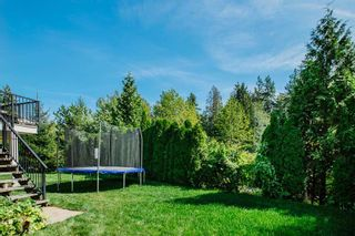 Photo 12: 20864 69 AVENUE in Langley: Willoughby Heights House for sale : MLS®# R2492378
