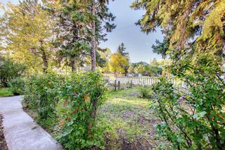 Photo 46: 1235 20 Avenue NW in Calgary: Capitol Hill Detached for sale : MLS®# A1146837