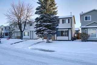 Photo 43: 148 Martinbrook Road NE in Calgary: Martindale Detached for sale : MLS®# A1069504