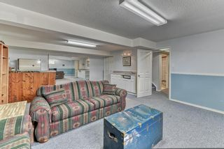 Photo 33: 424 Cole Crescent: Carseland Detached for sale : MLS®# A1106001