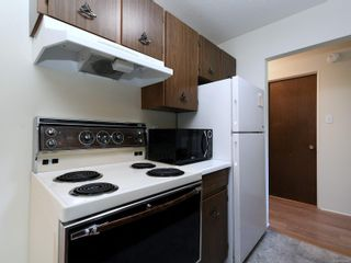 Photo 9: 101 1680 Poplar Ave in : SE Mt Tolmie Condo for sale (Saanich East)  : MLS®# 856970