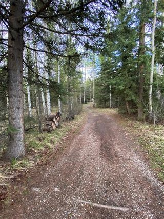 Photo 44: 350084 TWP 35-0: Rural Clearwater County Land for sale : MLS®# C4297425