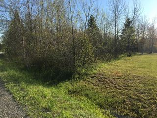 Photo 4: Lot 11-2 Douglas Road in Alma: 108-Rural Pictou County Vacant Land for sale (Northern Region)  : MLS®# 202113696