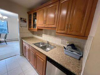"Photo 3: 236 8460 LANSDOWNE Road in Richmond: Brighouse Condo for sale in ""Lexington Square"" : MLS®# R2551248"