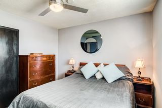 Photo 15: 2923 Doverville Crescent SE in Calgary: Dover Semi Detached for sale : MLS®# A1146625