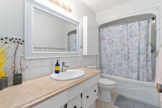 Photo 14: 6108 40 Avenue in Edmonton: Zone 29 House for sale : MLS®# E4243028