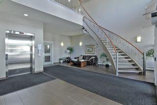 Photo 34: 313 5211 50 Street: Stony Plain Condo for sale : MLS®# E4258584