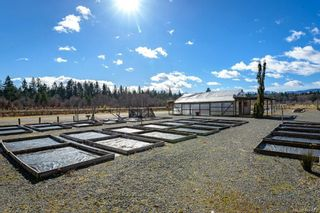 Photo 5: 3125 Piercy Ave in : CV Courtenay City Land for sale (Comox Valley)  : MLS®# 866873