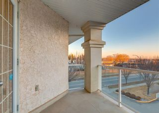 Photo 27: 327 45 INGLEWOOD Drive: St. Albert Apartment for sale : MLS®# A1085336
