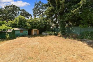 Photo 5: 2520 Forbes St in : Vi Oaklands House for sale (Victoria)  : MLS®# 880118